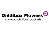 Diddibox